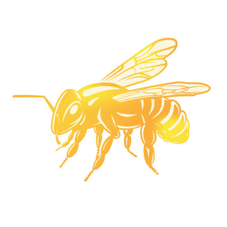 Bee illustration, logotype isolated on dark background. Black and white illustration. Flat design.