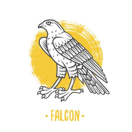 Falcon icon vector illustration