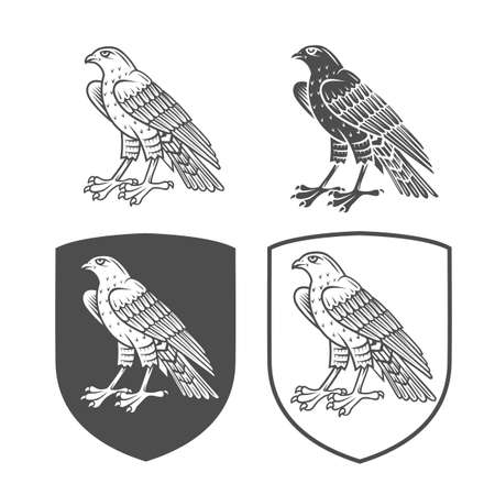 Vector heraldic shields with falcon on a white background. Coat of arms, heraldry, emblem, symbol design elements.