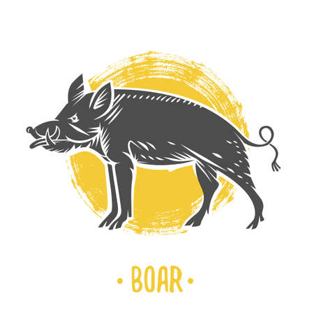 Vector heraldic shields with boar on a yellow background Illustration