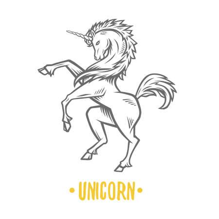 Vector image of heraldic unicorn. Black and white illustration. Illustration