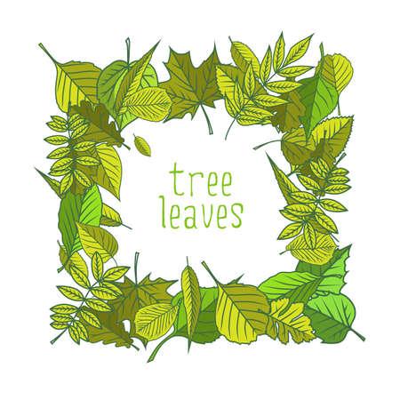 Tree leaves. Colorful illustrations. Vector illustration. Çizim