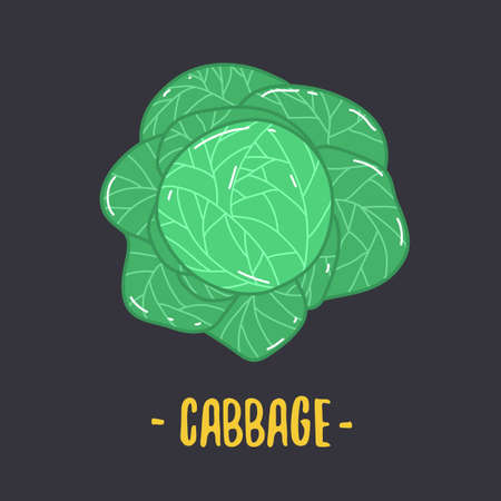 Cabbage with big bright green leaves. Fresh and healthy food. Vegetarian nutrition. Foto de archivo - 138112933