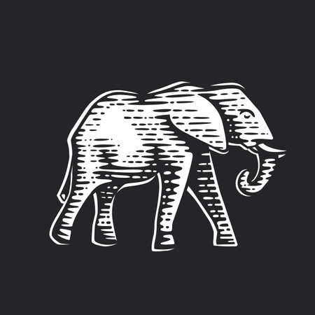 Illustration of the elephant. Illustration of the dog. Vector illustration. Black and white vector objects.