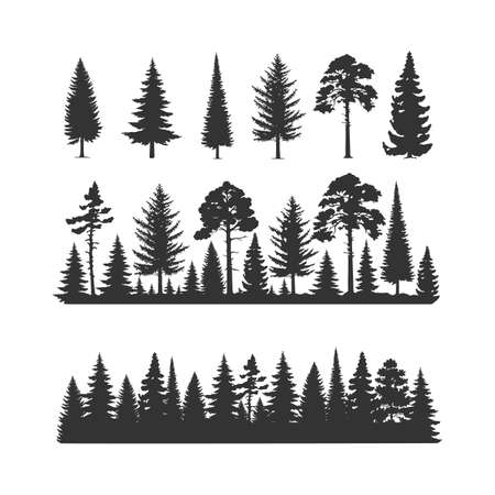 Vector trees illustrations. Monochrome illustrations with a coniferous trees. 向量圖像
