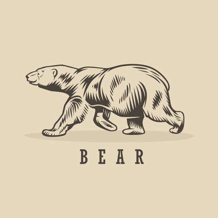 Vector bear illustration. Monochrome illustration with a bear. 向量圖像