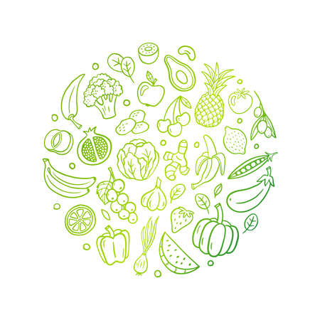 Hand-drawn gradient line vector illustration with fruits and vegetables. Healthy food in an original doodle organic style. Great for banners, sites, menu design, packaging, cooking book or advertising. 向量圖像