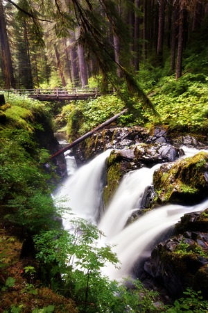 sol duc river: Waterfall at Sol Duc Falls in the Olympic National Park of Washington State