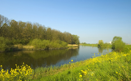 A typical dutch polder landscape during spring Stock Photo