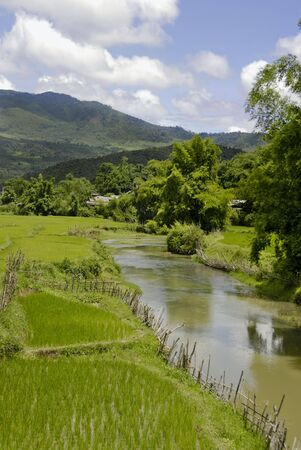 Landscape with a small river floating through Laos with some ricefields in the foreground Stock Photo