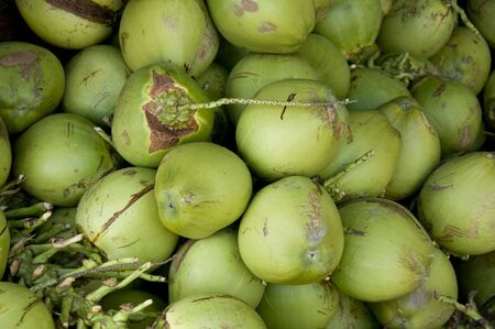 Pile of green Coconut, usable as background