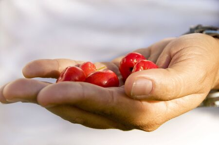 Person holding wild cherries in her hand before her body. Shallow DOF