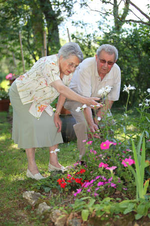 elderly couple in garden photo