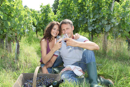 winemaker: Couple testing wine in vineyard