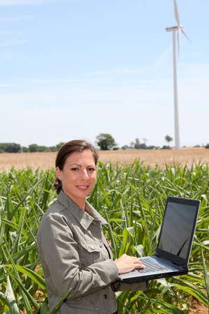 agronomist: Agronomist in corn field Stock Photo