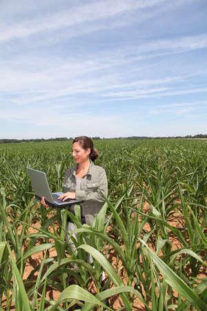 Agronomist in corn field photo