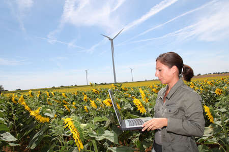 Agronomist in sunflowers field photo