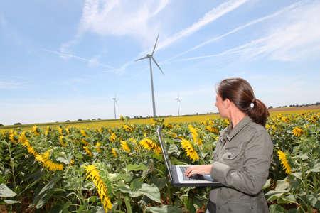 agronomist: Agronomist in sunflowers field Stock Photo
