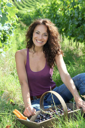 Winegrower woman sitting in vine rows with basket of grapes photo