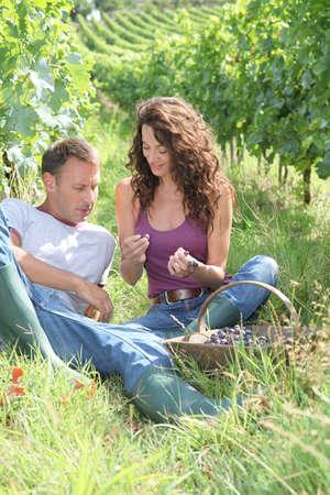 Happy vinegrowers sitting in vineyard photo