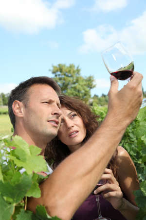 40 year old woman: Couple testing wine in vineyard