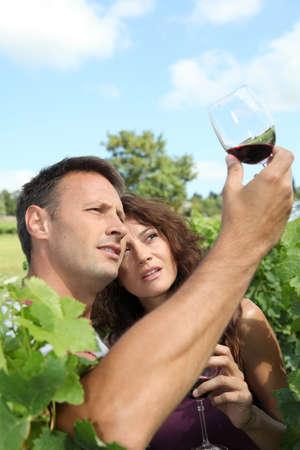40 year old: Couple testing wine in vineyard