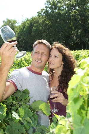 wine testing: Couple testing wine in vineyard