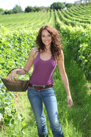 Winegrower woman standing in vine rows with basket of grapes photo