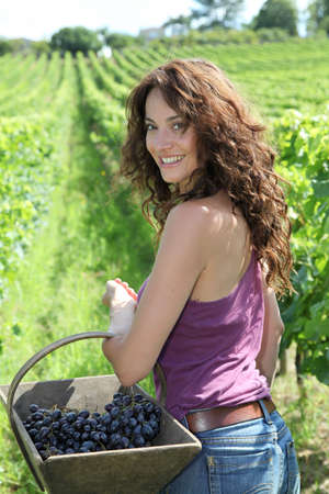 Winegrower woman stading in vine rows with basket of grapes photo