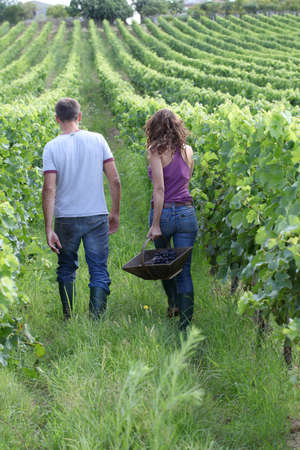 40 year old man: Happy couple standing in vineyard