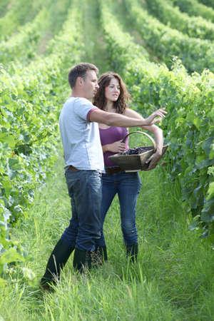 Happy couple standing in vineyard photo