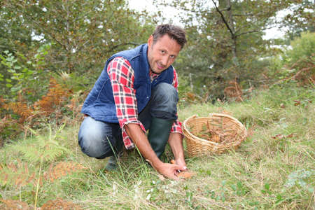 mushroom picking: Closeup of man with basket looking for mushrooms on the ground