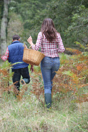 Couple in forest picking mushrooms in autumn photo