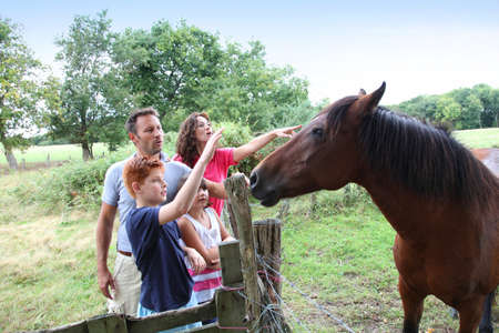 Parents and children petting horses in countryside photo