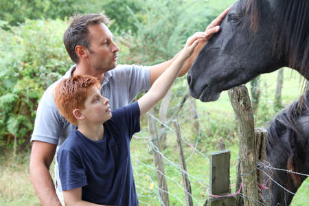 petting: Parents and children petting horses in countryside