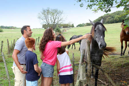 horses in field: Parents and children petting horses in countryside