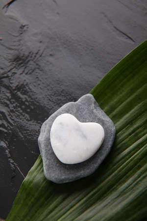 peeble: Closeup of white peeble on green leaf