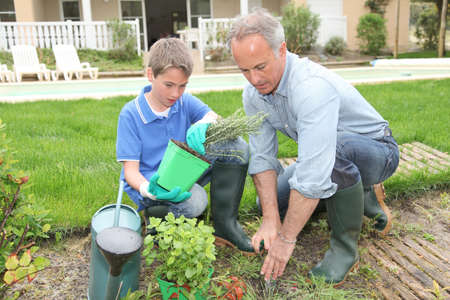 Father and son planting flowers in house garden photo
