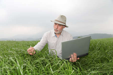 Farmer examining crop with laptop computer photo