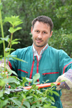 domestic garden: Portrait of smiling gardener