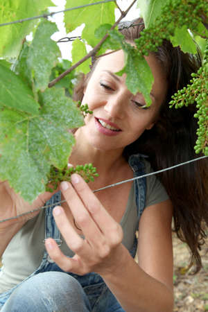 Woman observing grapes in vineyard photo