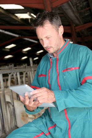 Farmer in barn using electronic tablet photo