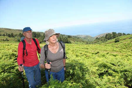 rambling: Portrait of happy senior couple hiking in natural landscape