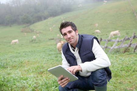 Breeder using electronic tablet in field photo