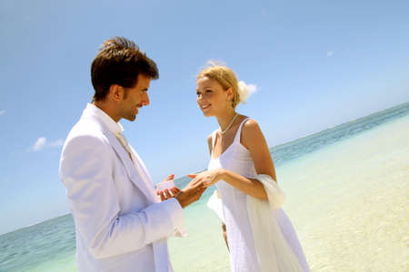 Wedding on a white sandy beach Stock Photo - 11503112