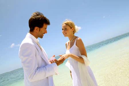 Wedding on a white sandy beach Stock Photo - 11503112