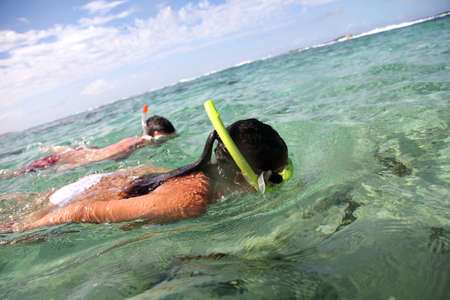 snorkelling: Couple snorkeling in Caribbean waters