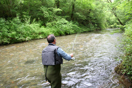 fly fishing: Back view of fisherman in river fly fishing