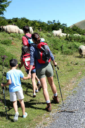 Family watching sheeps in the mountain while trekking photo