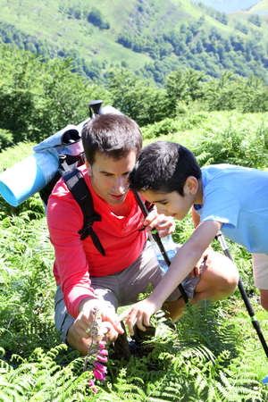 observation: Father showing wild flowers to son in the mountain